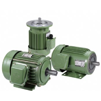 AC Induction IEC Motor